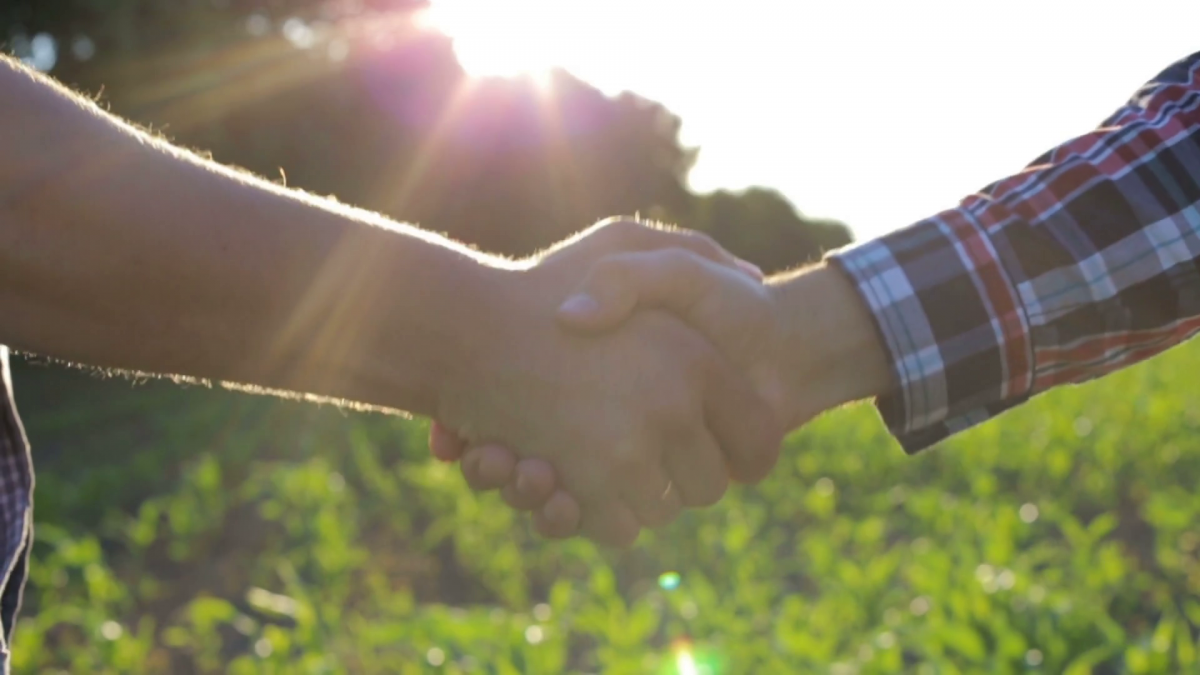 videoblocks-handshake-of-two-farmers-on-the-field_bx81poomb_thumbnail-full12-1200x675.png